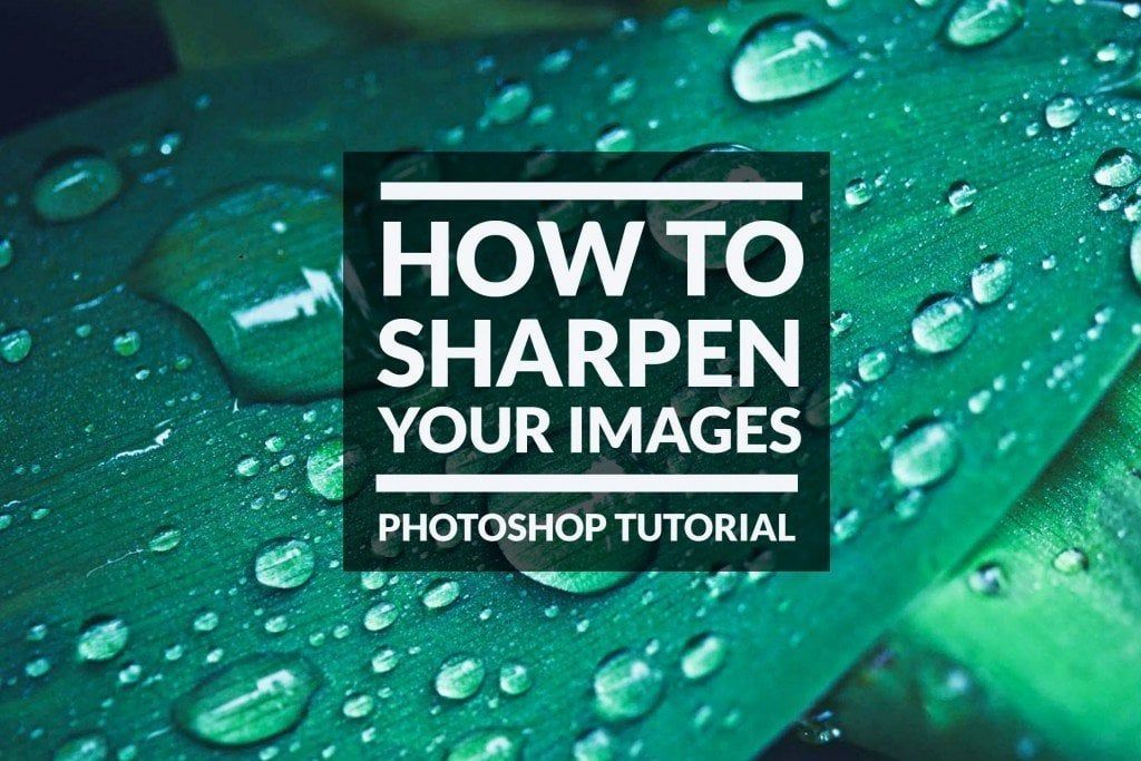 How to Sharpen Images with a High Pass Filter in Photoshop