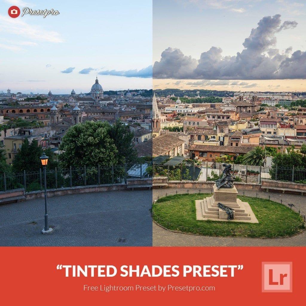 Free-Lightroom-Preset-Tinted-Shades