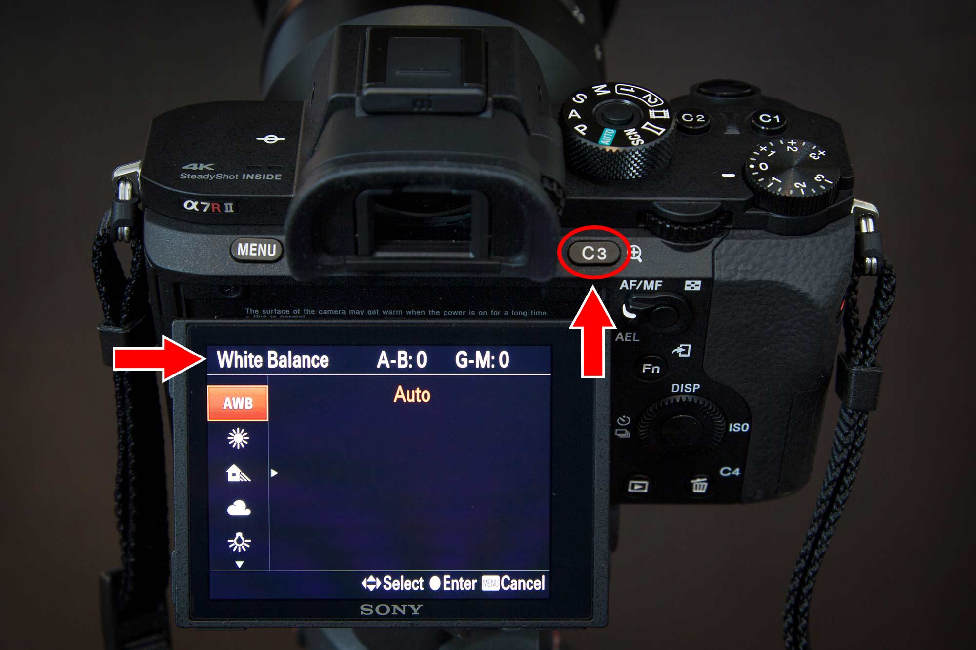Sony a7r ii Customize Your Buttons White Balance