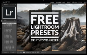 Free-Lightroom-Preset-Driftwood-Cover